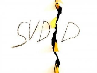 Fondazione SUDD - Logo (2)